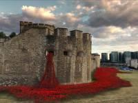 Удивительную инсталляцию из маков организовали у стен лондонского тауэра по случаю годовщины начала Первой мировой войны