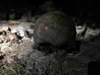 В Екатеринбурге нашли тайное захоронение. Останки людей пролежали в земле не один десяток лет
