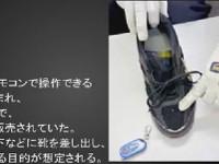 Японских извращенцев попросили добровольно сдать ботинки, заглядывающие под юбки