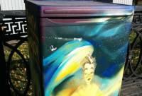 В России решили, что холодильники вполне подходят для хранения книг