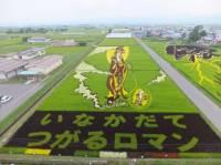 У нас такого вы точно не увидите. Японцы умудряются создавать картины даже на рисовых полях