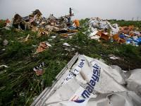 Во время сбора кусков малазийского «Боинга» найдены новые человеческие останки