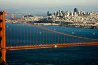 Мэром Сан-Франциско на один день стала... собака