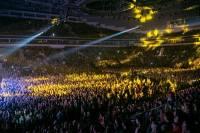Украинскую символику уже запретили в Белоруссии? На концерте «Океана Эльзы» ОМОН отбирал у людей флаги Украины