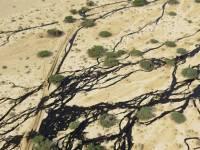В Израиле произошла крупнейшая за всю историю страны авария на нефтепроводе