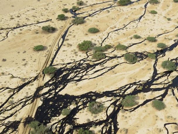 ФОТО:Авария на нефтепроводе в Израиле нанесла ущерб экологии
