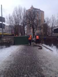 В Киеве столетние ели вырубят ради очередной высотки /СМИ/