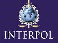 Неизвестно, что предоставила Генпрокуратура Интерполу, но после этого он отказался объявлять Януковича в розыск