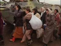 Количество переселенцев из Крыма и зоны АТО превысило 624 тысячи человек