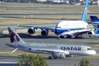 Самолет из Мадрида задержали на шесть часов из-за… мыши