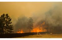 Забайкалье в огне: «Все думают об Украине, а о нас совсем забыли»