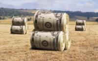 Инвестиции в АПК Украины: мечты и реальность