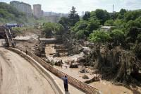 Рыком сбежавшего тигра подростки пугали жителей Тбилиси