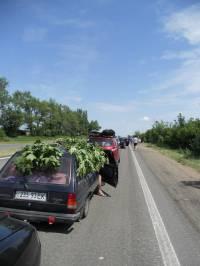На Трассе Мариуполь-Донецк скопились сотни машин