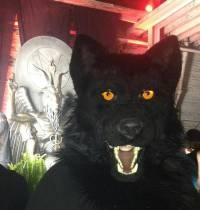 Демократический дурдом: в США открыли 2,7-метровую статую... сатаны