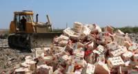 В аннексированном Крыму уничтожили более 4 тонн санкционных нектаринов