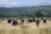 Тысячи нелегалов прорвали границу между Грецией и Македонией