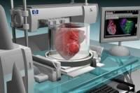 Ученые создали аппарат для трансплантации, который позволяет сердцу биться вне тела человека