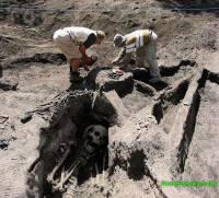 Археологи в ЮАР обнаружили останки человека, возрастом более 2,5 млн лет
