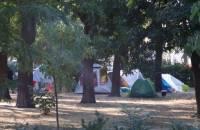 В Одессе на Куликовом поле появился палаточный городок