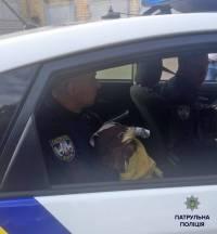 Столичные полицейские спасли из гаражного плена трех беркутов