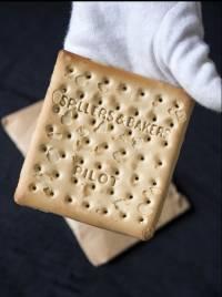 Уцелевшее печенье с «Титаника» продали за 23 тыс. долл.