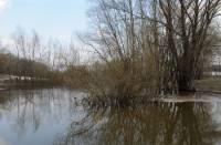 Очередная авария на воде привела к гибели человека в Одесской области. Еще один пропал без вести