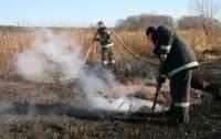 Спасатели практически справились с тлеющими торфяниками на Киевщине