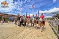 На выходных в «Парке Киевская Русь» выставка породистых лошадей