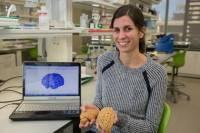 Ученые выяснили, чем все-таки мозг человека лучше, чем шимпанзе