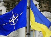 Украина остается в приоритетах Североатлантического альянса