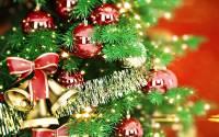Новогодние празднества в Киеве начнутся 19 декабря и пройдут сразу на 5 площадях