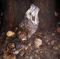 В Красноармейске случайный прохожий нашел на улице взрывное устройство
