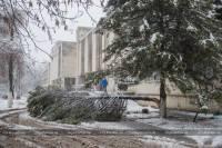Таковы последствия небывалого снегопада в Харькове