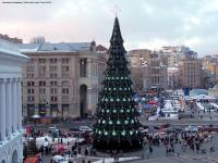 Главную новогоднюю елку Украины завтра привезут в Киев из Прикарпатья