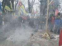 Активисты забросали Раду морковью и сожгли чучело Яценюка
