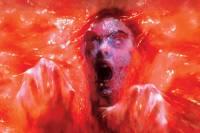 Ученые выяснили, что выражение «от страха кровь стынет в жилах» - не простая метафора