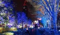 Куда сходить в Киеве на Новый год и в последующие дни