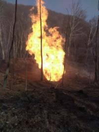 На Закарпатье взорвался магистральный газопровод. Столб огня достигал 50 метров