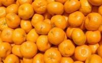 В России начали уничтожать турецкие мандарины