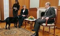 Путин рассказал, как пытался «сделать приятное» Меркель с помощью лабрадора
