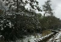Во Вьетнаме выпал снег. Синоптики говорят об аномальном похолодании