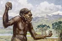 Оказывается, люди уничтожили неандертальцев своей культурой