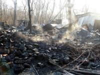 В столичной рекреационной зоне дотла сгорело кафе на 80 квадратов