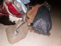 В Мукачево патрульная машина случайно наехала на скутериста с баулами