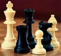 Во Львове подняли флаг Чемпионат мира по шахматам