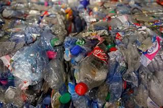 Японцы открыли вид бактерий, способных разлагать пластик