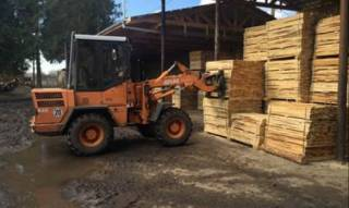 СБУ блокировала незаконный экспорт пиломатериалов на 40 млн грн.