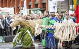 В Литве протестовали молочники