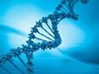 В Сети появилась инструкция, с помощью которой каждый человек сможет извлечь свою ДНК